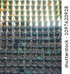 vertical used hanging plant... | Shutterstock . vector #1097620928