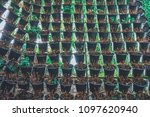vertical used hanging plant... | Shutterstock . vector #1097620940