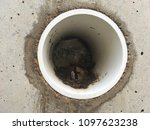 Small photo of Storm Drain - PVC Pipe Drain