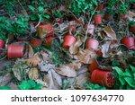 flower garden wasteland with... | Shutterstock . vector #1097634770
