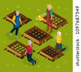 isometric pensioners working in ... | Shutterstock .eps vector #1097687549
