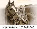 blonde and white horse on... | Shutterstock . vector #1097691866