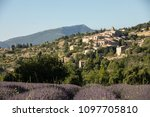 A Lavender Field With The...