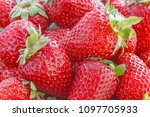 heap of red ripe strawberry | Shutterstock . vector #1097705933