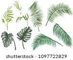set green leaves of tropical... | Shutterstock .eps vector #1097722829