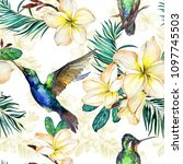 beautiful colibri  yellow... | Shutterstock . vector #1097745503