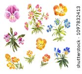 set of watercolor little... | Shutterstock . vector #1097832413