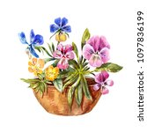 watercolor drawing of flowerbed.... | Shutterstock . vector #1097836199