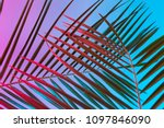 tropical and palm leaves in... | Shutterstock . vector #1097846090