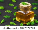 homemade pine cough syrup for... | Shutterstock . vector #1097872223