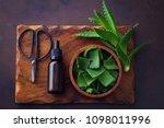 bottle of aloe vera essential...   Shutterstock . vector #1098011996