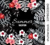 summer background with tropical ... | Shutterstock .eps vector #1098020840