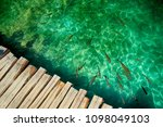 clear water in plitvice lakes ... | Shutterstock . vector #1098049103