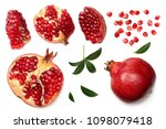 pomegranate fruit with seeds... | Shutterstock . vector #1098079418