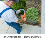 garden worker vacuuming up dead ... | Shutterstock . vector #1098105998