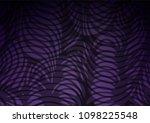 dark purple vector natural... | Shutterstock .eps vector #1098225548