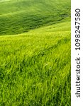 open countryside view of green... | Shutterstock . vector #1098247580