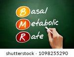 bmr   basal metabolic rate... | Shutterstock . vector #1098255290