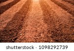 land ready plowed  prepared for ...   Shutterstock . vector #1098292739