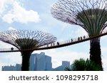 singapore 6 april 2017  gardens ... | Shutterstock . vector #1098295718