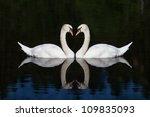 swans heart | Shutterstock . vector #109835093