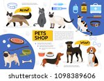flat pet shop infographic... | Shutterstock .eps vector #1098389606