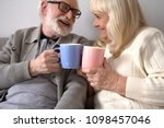 sweet elderly couple having... | Shutterstock . vector #1098457046