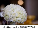 bright wedding bouquet for the... | Shutterstock . vector #1098475748