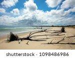 indian ocean coastline and... | Shutterstock . vector #1098486986