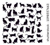 blecks silhouettes cats | Shutterstock .eps vector #1098557663