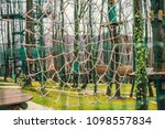 rope park in the forest. active ... | Shutterstock . vector #1098557834