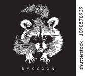 raccoon   realistic portrait on ...   Shutterstock .eps vector #1098578939