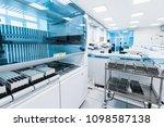 saint petersburg  russia  ... | Shutterstock . vector #1098587138