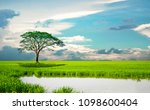 the sky is a reflection of the... | Shutterstock . vector #1098600404