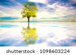 tree and beautiful sky a... | Shutterstock . vector #1098603224
