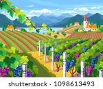 rural landscape with vineyard ... | Shutterstock . vector #1098613493