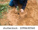 children planting trees in the... | Shutterstock . vector #1098630560