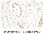 watercolor illustration. floral ... | Shutterstock . vector #1098665960