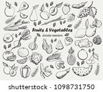 fruits and vegetables.  vector... | Shutterstock .eps vector #1098731750