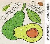 sweet juicy avocado. summer... | Shutterstock .eps vector #1098745886