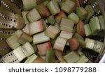 fresh rhubarb in a sieve | Shutterstock . vector #1098779288