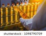 sunflower oil. olive oil. the... | Shutterstock . vector #1098790709
