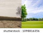 ecology concept change tree... | Shutterstock . vector #1098816356