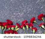 Carnations On A Granite Plate
