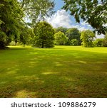A Green Lawn In The Park Summer ...