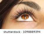 eyelash extension procedure.... | Shutterstock . vector #1098889394