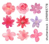 watercolor flowers hand drawn... | Shutterstock .eps vector #1098985778