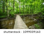 Hiking Trails Along Ponds And...