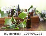 essential oils for aromatherapy | Shutterstock . vector #1099041278