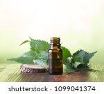 melissa essential oil   a... | Shutterstock . vector #1099041374